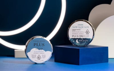 Get in Bed with PLUS!